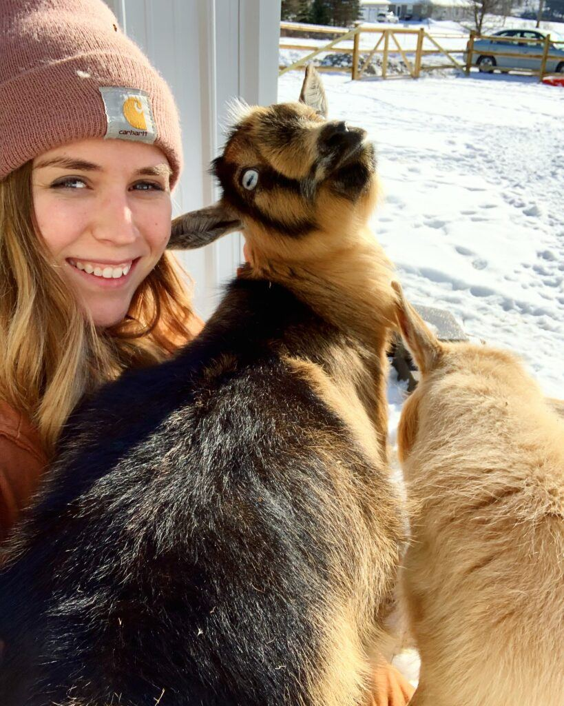 person-with-nigerian-dwarf-goat